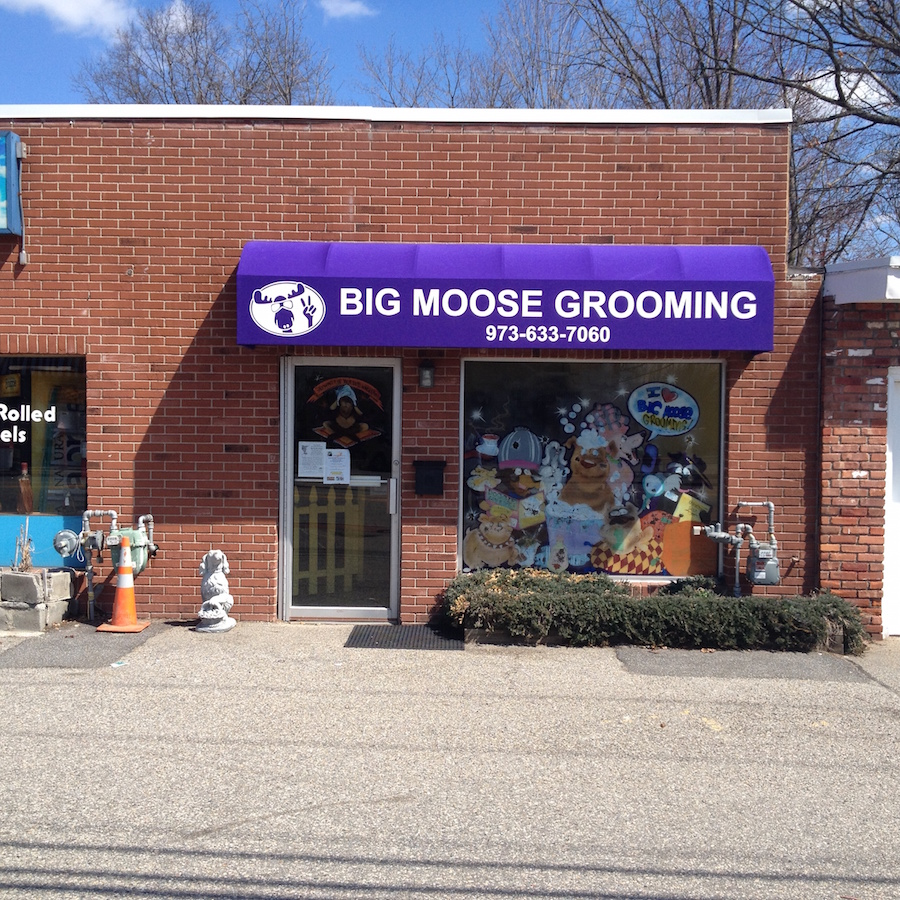 Commercial Awnings   Canopy